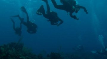 DDS Divers Swimming Over the Reef in Roatan