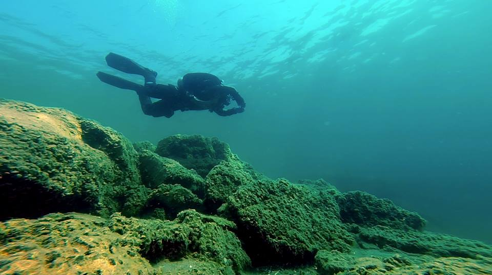dds_diver_tobermory