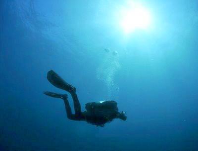 DDS Diver Exploring Tobermory