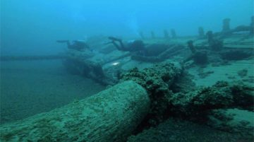 2 divers swimming across an old wooden shipwreck